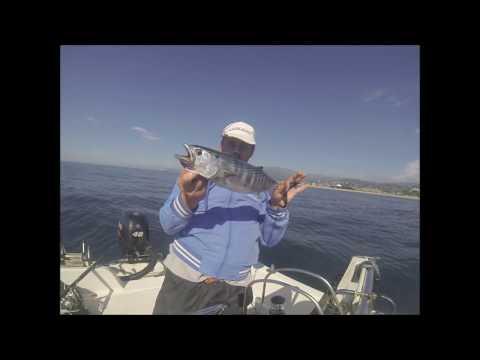 Come lavorare una grata ai ferri per pescare di video nelle mani