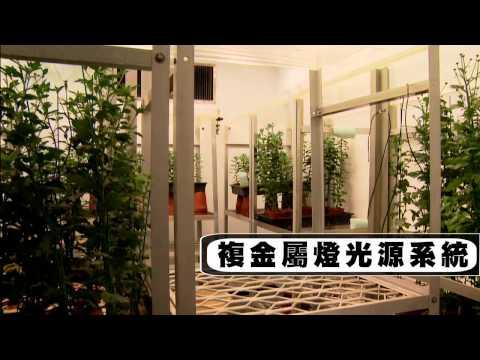 臺灣大學人工氣候室簡介 (中文版)