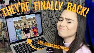 THE JONAS BROTHERS ARE BACK?! SUCKER REACTION