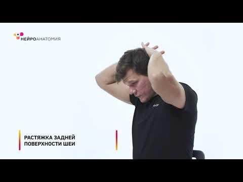 Боль в шее и плечелопаточной области — Упражнения