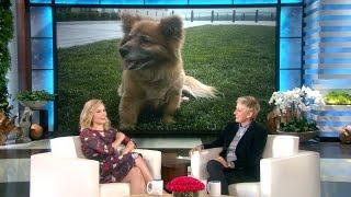 Kristen Bell's Hero Dog, Lola