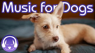 15 Hours of Soothing Music for Dogs! INSTANTLY Calm Your Dog (2019!)