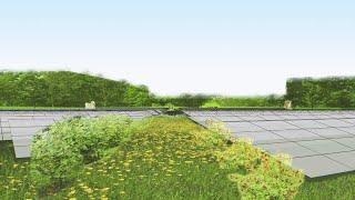 Raad Zeewolde geeft groen licht voor zonnepark Horsterwold, tegenstander Hans Brouwer reageert