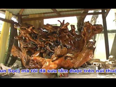 Vườn cây cảnh của anh Nguyễn Thanh Biên P2