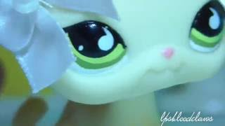 LPS- I Love You, I love You NOT