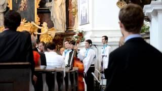 Svatba Barči a Míši   Lásko, milá lásko