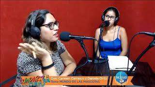 COMPARTE CULTURA: TEMA / MUNDO DE LAS MASCOTAS