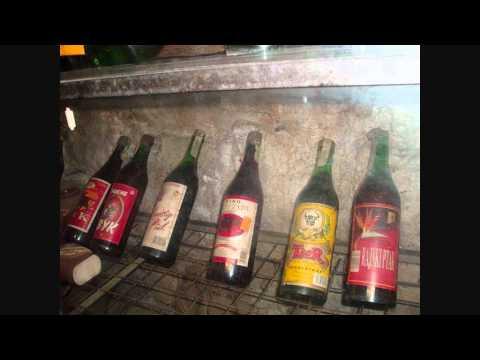 Encefalopatia po alkoholizmu
