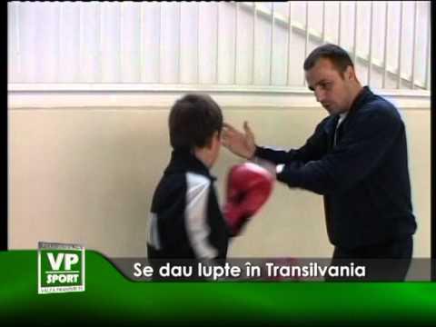 Se dau lupte în Transilvania