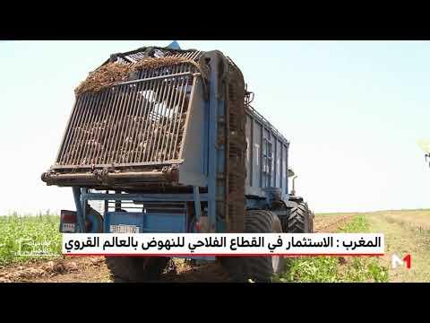 العرب اليوم - شاهد: استراتيجية زراعية للنهوض بالعالم القروي في المغرب