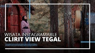 Pesona Wisata Clirit View Kalibakung Tegal, Spot Instagramable Hutan Pinus