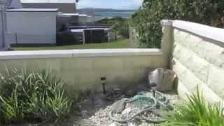Bwthyn Gwyn Holiday Let Rhosneigr Anglesey Ownersdirect W422