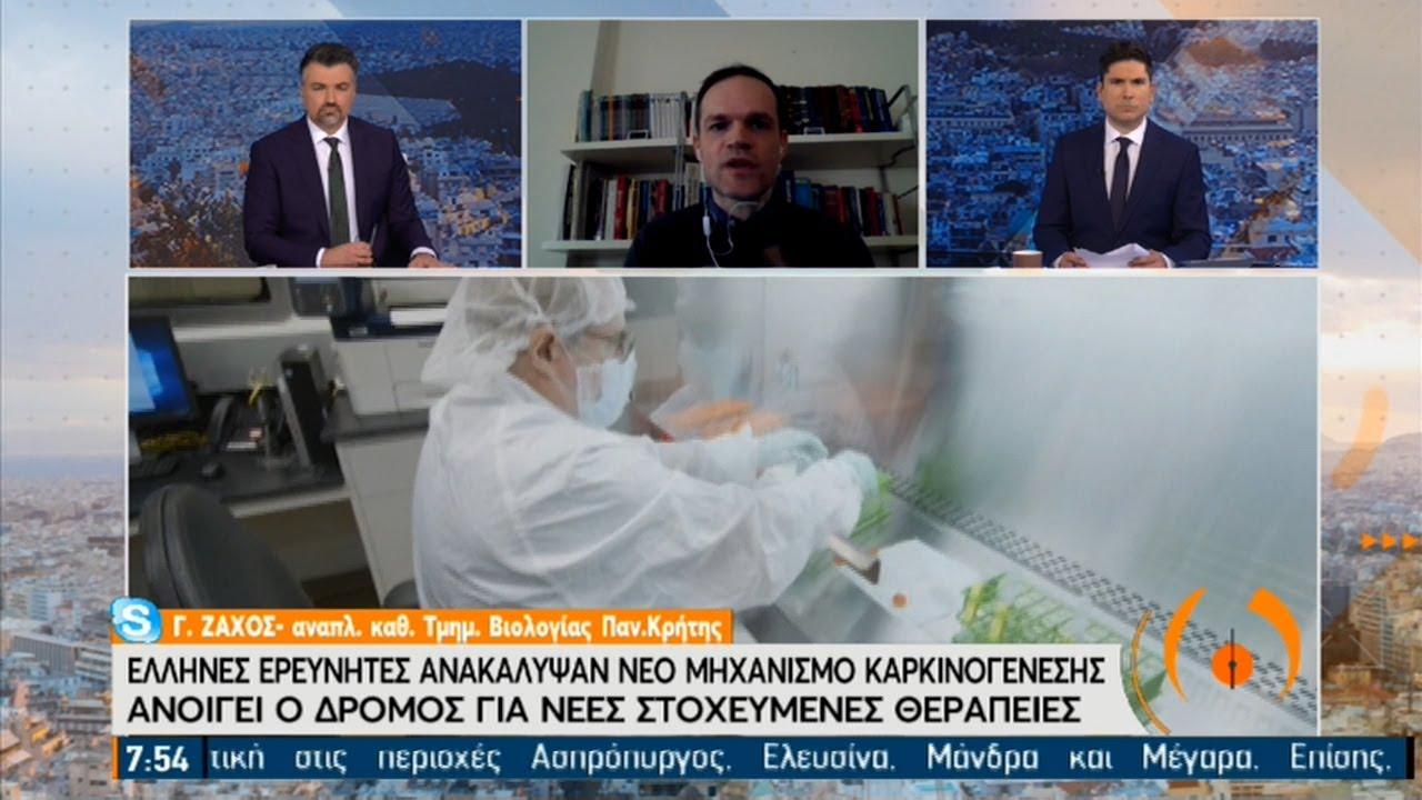 Έλληνες ερευνητές ανακάλυψαν νέες στοχευμένες θεραπείες για τον καρκίνο | 08/02/2021 | ΕΡΤ