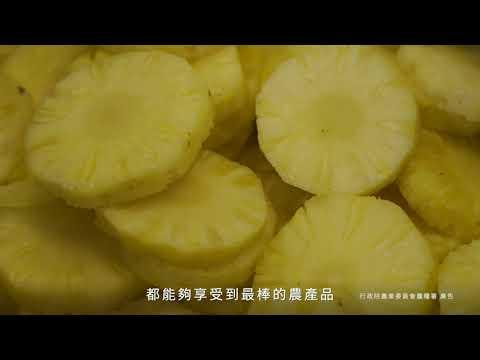 2020農產品初級加工場紀錄片