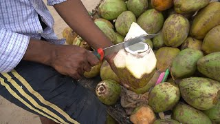 Very Amazing Coconut Cutting Skills | Indian Street Food