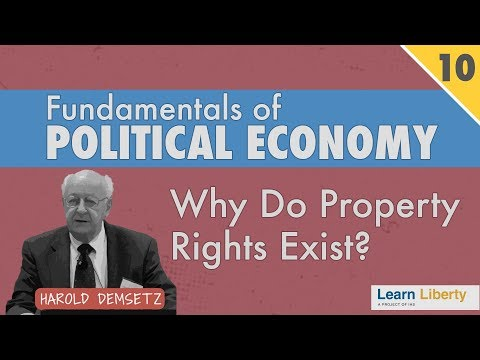 Property Rights as a Response to a Problem