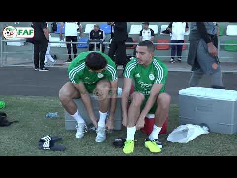 Fédération Algérienne Football