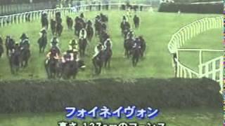 (競馬)2001年グランドナショナル.mpg