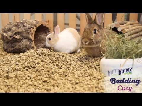Bunny Litter Cosy Bedding 20L
