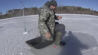 Ловля окуня зимой на усть илимском водохранилище