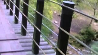 観光スポット花貫渓谷茨城県高萩市