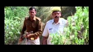 Trailer - Beehad The Ravines