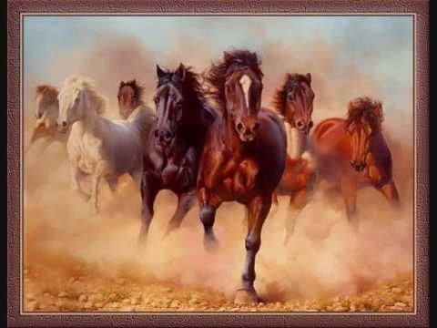 Pferde und Sättel / Martin Lauer
