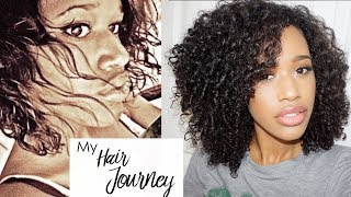 My Natural Hair Journey! Heat & Color Damage Recovery