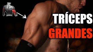 Rutina de Tríceps - Entrena todas las tres cabezas de tríceps