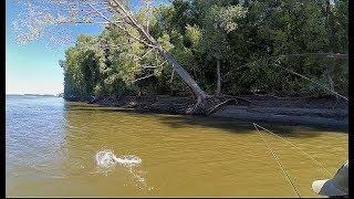 Ловля хищника спиннингом река обь 2020г