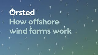 How Offshore Wind Farms Work