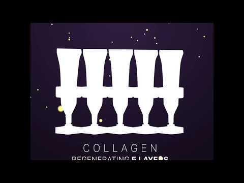 Fitoproteoglicanos - Collagen Nuôi Da 5 Lớp