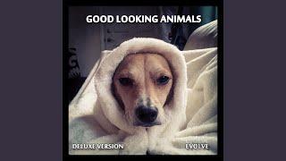 How You Do It (Deluxe Version) de Good Looking Animals