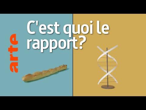 Une baguette et le séquençage du génome, c'est quoi le rapport ?   Reconnexion   ARTE Une baguette et le séquençage du génome, c'est quoi le rapport ?   Reconnexion   ARTE
