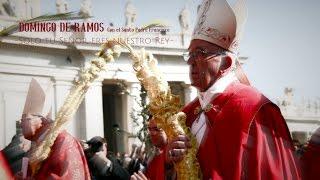 DOMINGO DE RAMOS: Santa Misa presidida por Papa Francisco