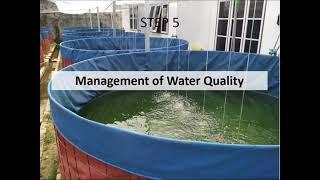 Biofloc Fish Farming Online Training Part 06 - Thủ thuật máy tính