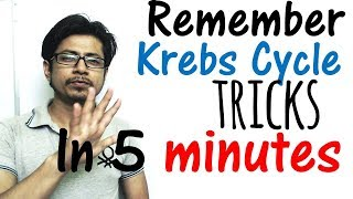 Krebs cycle trick made easy | Remember Krebs cycle in 5 minutes