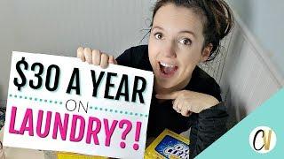 $30 A YEAR ON LAUNDRY?! MONEY SAVING HACKS!