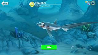 hungry shark world Thresher (3D Motion)