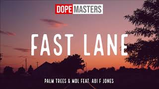 Musik-Video-Miniaturansicht zu Fast Lane Songtext von Palm Trees, Mdl & Abi F Jones