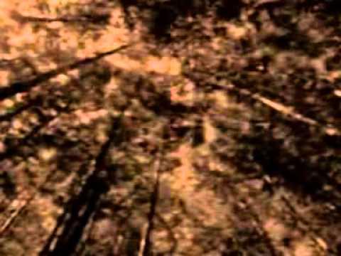MHYTOS-Lorong Waktu