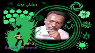 اغاني حصرية عاطف السماني وحشاني عيونك تحميل MP3