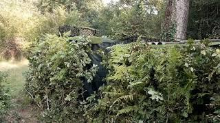 Camouflage de la palombière N°2