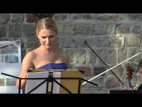 Koncert skrzypcowy w ramach projektu ARTYSTYCZNE LATO 2018