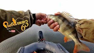 Окунь на отводной на каждом забросе, сказочная рыбалка на спиннинг осенью