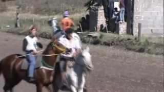 preview picture of video 'carrera de caballos el petaca'