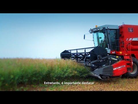 Vídeo mostrando a colheita de canola