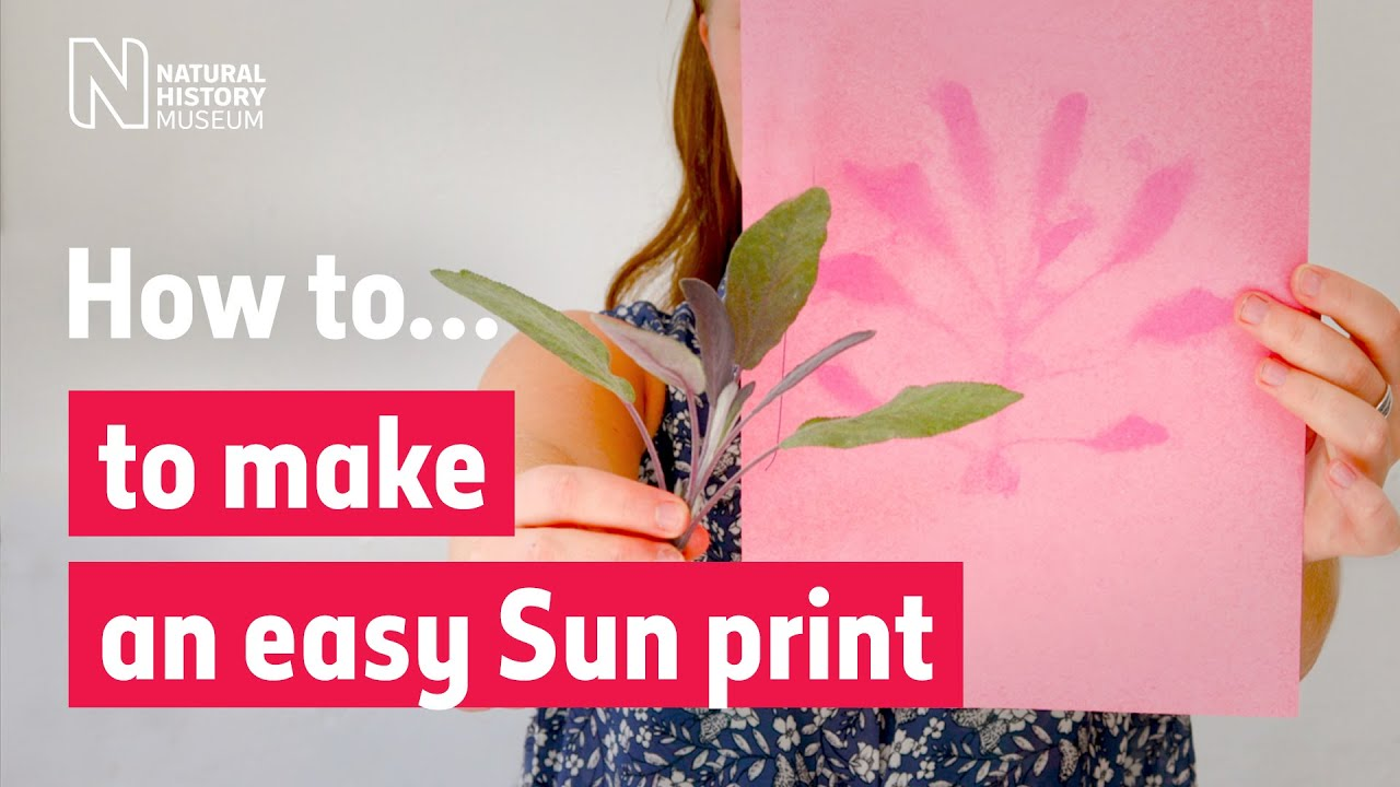 How to make an easy Sun print