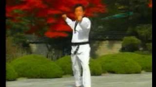 taekwondo poomse 5