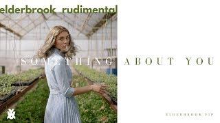 Elderbrook & Rudimental   Something About You (Elderbrook VIP)